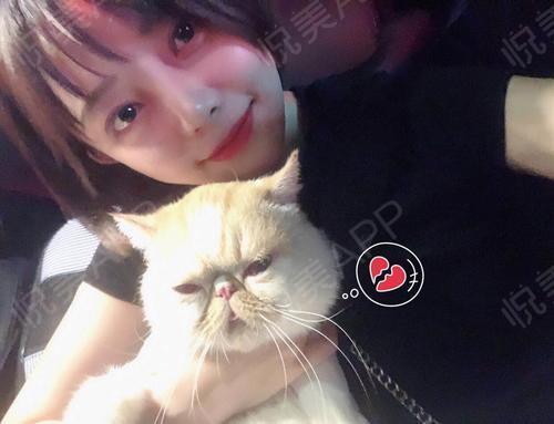 我们一起学猫叫简谱